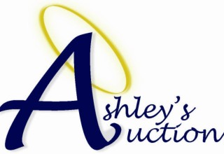 Ashley's Logo in paint