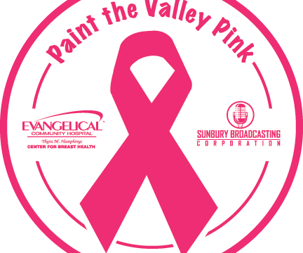 paint_valley_pinkprofile