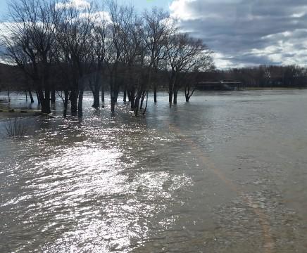 Susquehanna river, flood, marina, confluence, West, North, high water